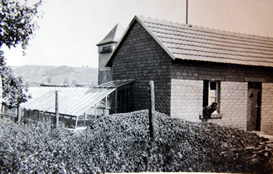 erstes-gewaechshaus