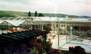 gewaechshaus-1993