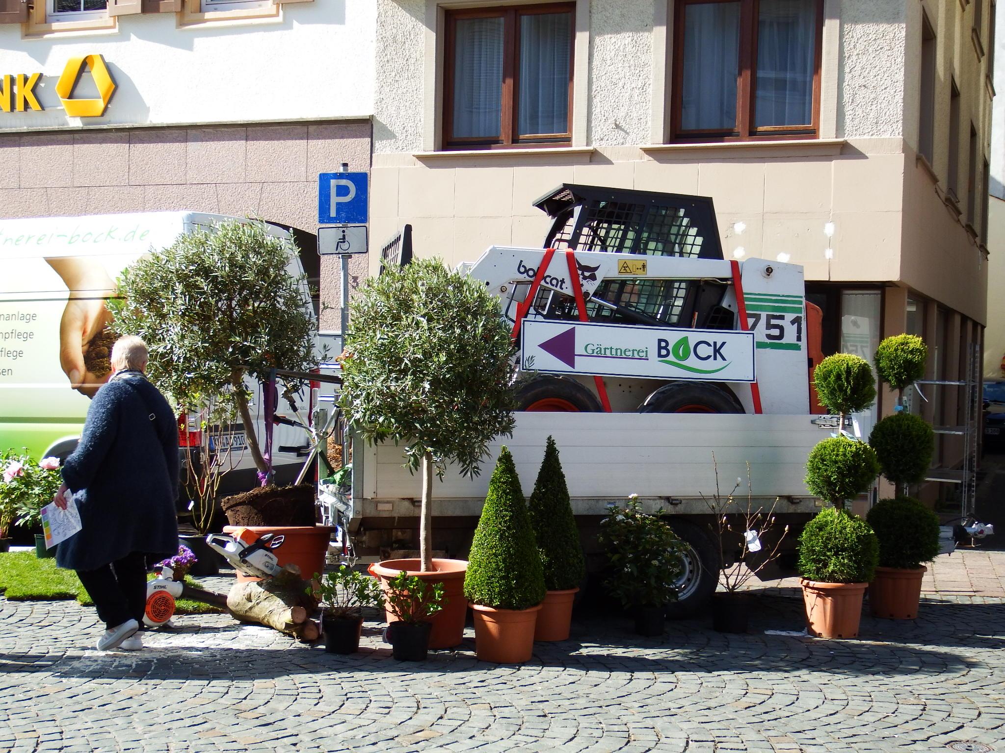 Gärtnerei Bock beim Frühlingserwachen in Kirn 2017