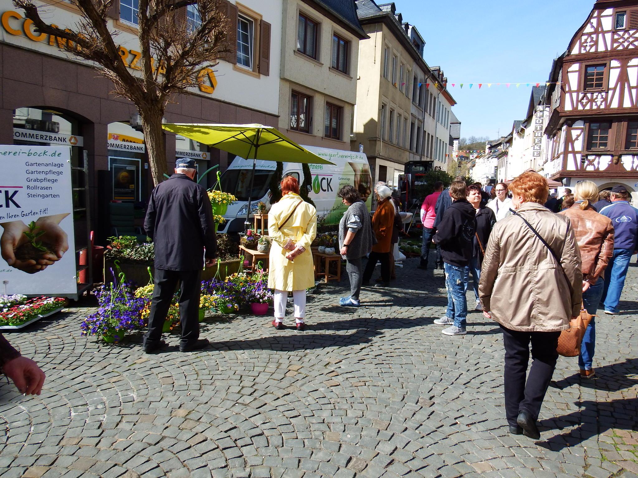 FRÜHLINGSERWACHEN IN KIRN - Galabau - Gartenanlage - Garten - Pflanzen - Bad Kreuznach - Bad Sobernheim - Kirn - Bingen - Meisenheim -