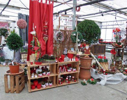 Weihnachten - Weihnachtsmarkt - Adventausstellung - Advent - Bad Sobernheim - Kirn - Merxheim - Medersheim - Monzingen - Hochstetten-Dhaun - Simmertal - Odernheim - Staudernheim - MEisenheim - Bad Kreuznach - Roxheim - Hargesheim - Gensingen - Bingen - Bad Münster - Simmern - Kusel - Lauterecken - Kirchberg - Gemünden