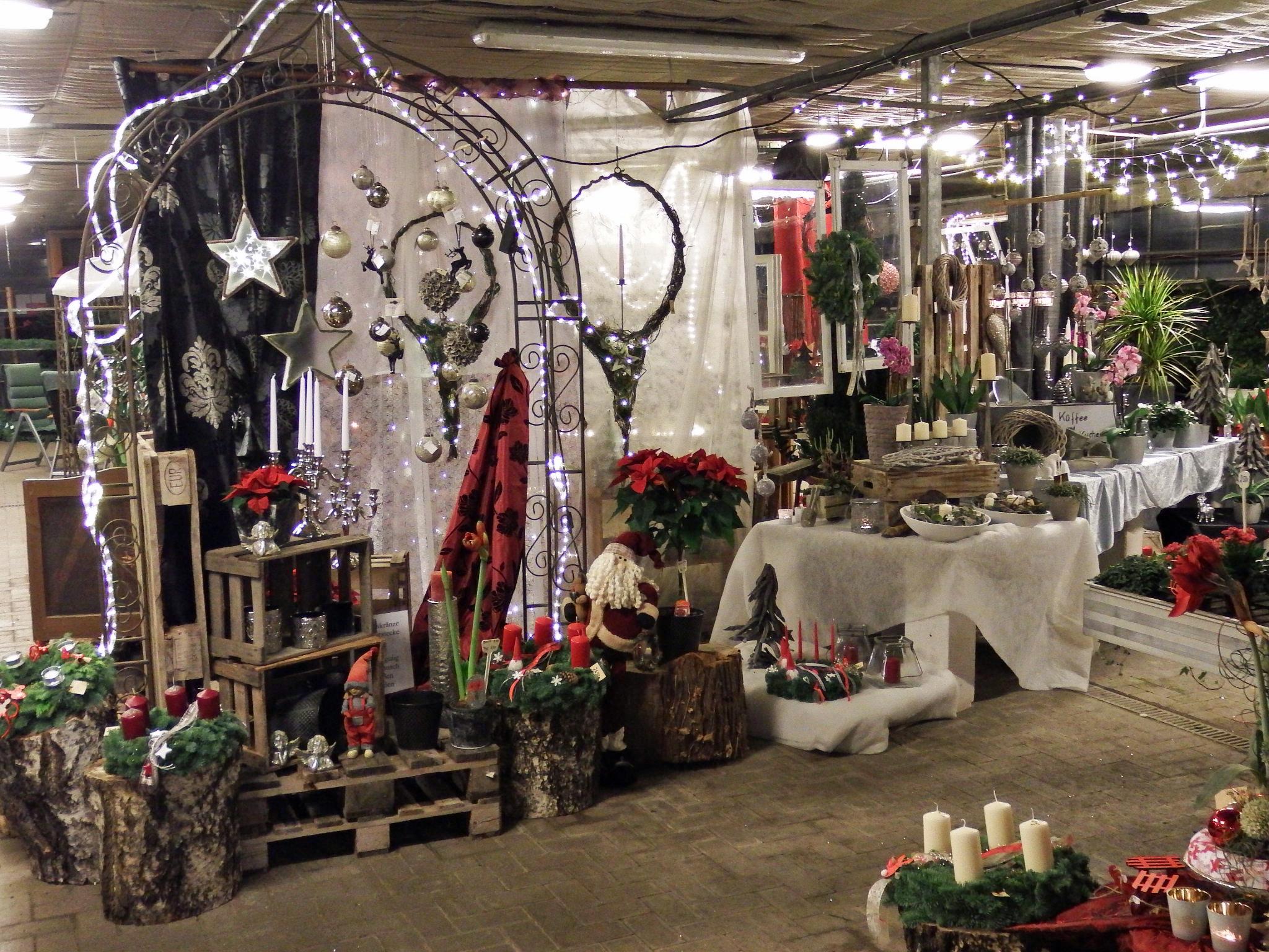 Bad Kreuznach Weihnachtsmarkt.Weihnachtsausstellung Garten Und Landschaftsbau Gartnerei Bock